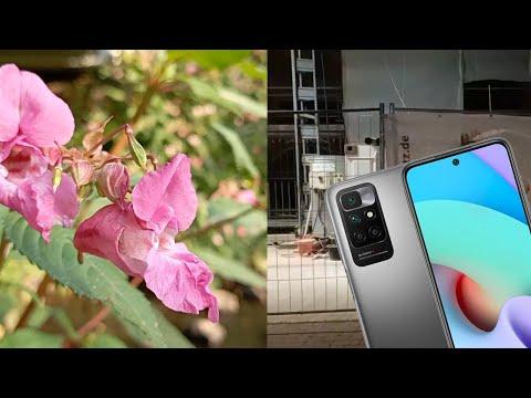 Redmi 10 | Camera Test Quality Day & Night 1080p30