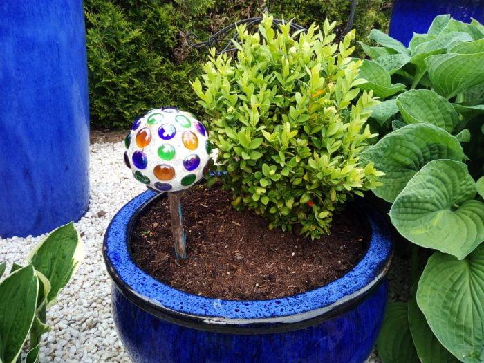 Aufnahme Garten