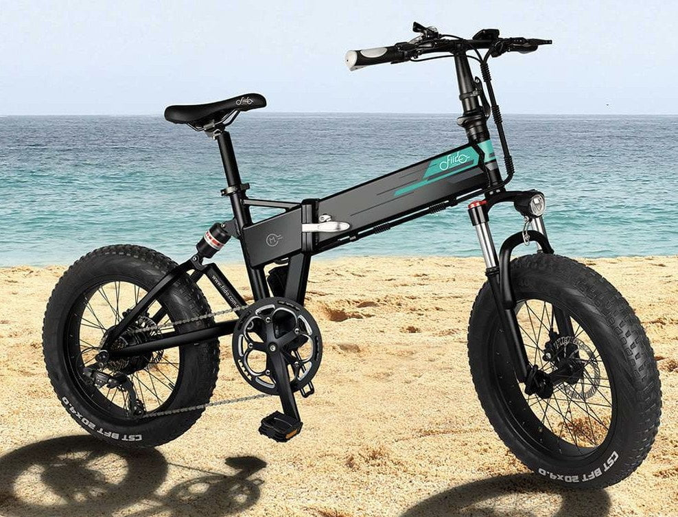 FIIDO M1 electric bike with 4 inch tires.